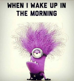 not a morning minion