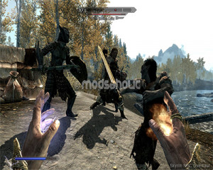 Skyrim - NPC Overhaul