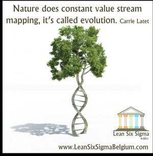 Continuous Improvement Quote - Nature does constant value stream ...
