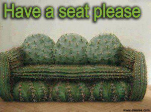 this entry was posted in photos and tagged cactus funny images funny