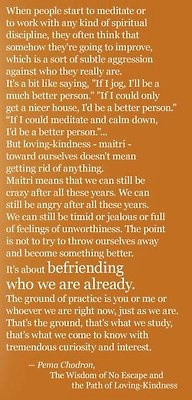 pema chodron s teachings mean so much to me