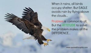 ... thoughts rain birds shelter eagle problem inspirational motivational
