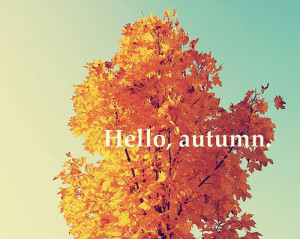 via autumn-afternoons)Happy first day of fall, everyone!