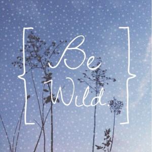 Be wild. Adventure quotes.