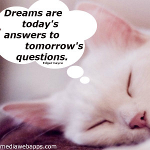 ... questions, quote, quotes, saying, sayings, sleepy cat, tomorrow, words