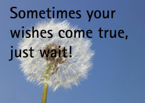 Wish Come True Quotes Sometimes your wishes come