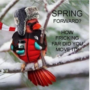 Spring forward?? Loll for real!