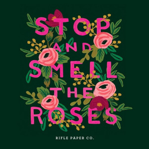 Illustrated quote: stop and smell the roses