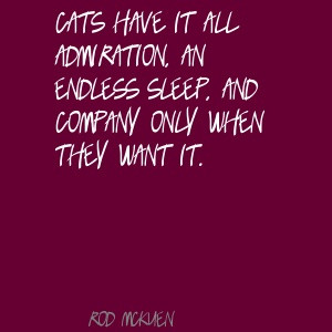 Google Image Result for http://www.lushquotes.com/pics/rod-mckuen/Cats ...