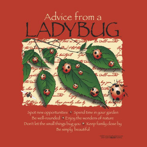 Advice From A Ladybug image