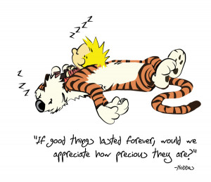 Calvin And Hobbes Quotes Hobbes quote by lizink