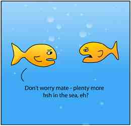 funny fish the sea quotes 260 x 251 4 kb jpeg courtesy of funylool com