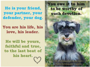Dog Loss Quotes Sayings A dog's devotion