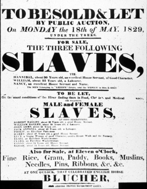 ... sold them wholesale they smuggled slaves to places where slavery was