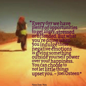 You can choose to not let little things upset you. - Joel Osteen