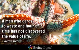 man who dares to waste one hour of time has not discovered the value ...