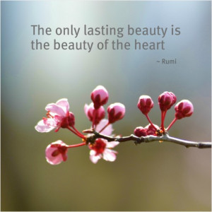 Spring Cherry Blossoms with Rumi Quote