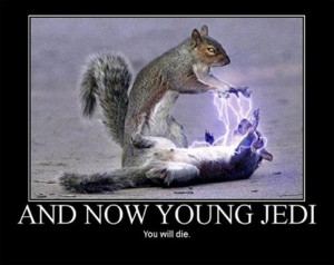 funny star wars pictures, and now young jedi you will die