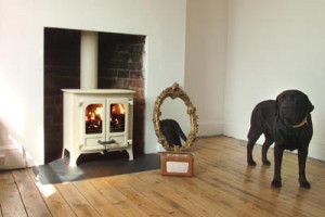 Beautiful Closed Combustion Fire Places