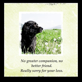 These are some of Dog Sympathy Cards Poems And Quotes pictures