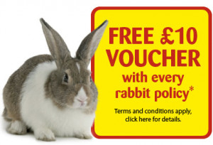 Free £12 voucher with every cat policy*
