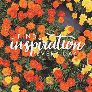 Find inspiration every day