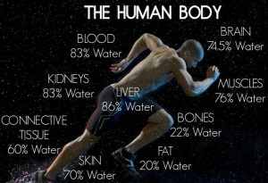 How much water is in the human body, is up to you and how much you put ...