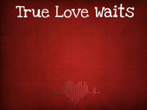 ... Love Waits Quotes Bible ~ Quotes For > True Love Waits Quotes Sayings