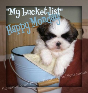 ... Happy Mondays, Picture-Black Posters, Buckets, Quotes, Puppies Rocks