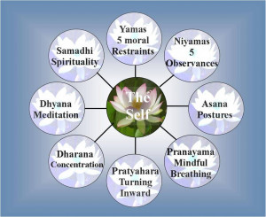 limbs of yoga in patanjali s yoga sutras the
