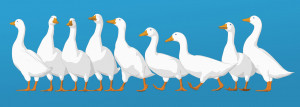 Aflac_Animation