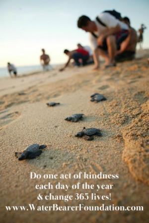 ... marine life and award marine biology scholarships! Inspiration quotes