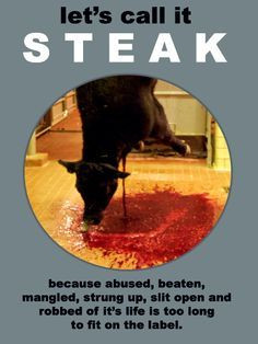 quotes google search more steak animal rights eating meat quote animal ...