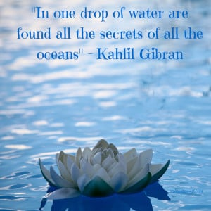 Beach Quote for In one Drop of water are found all the secrets of all ...
