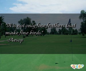 Feathers Quotes