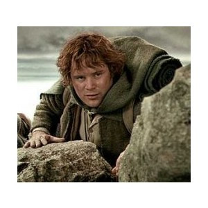 Samwise Gamgee Quotes