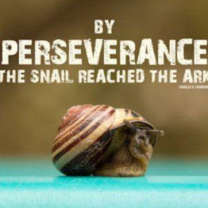 Christian Poster | Charles Spurgeon Quote | By Perseverance the Snail ...