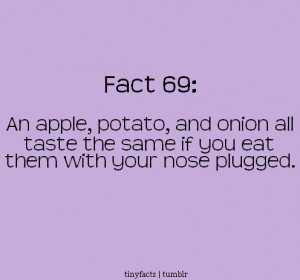 Fact Quote – An apple patato