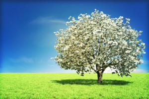 Spiritual Consciousness And Financial Abundance - Manifest Your Life ...