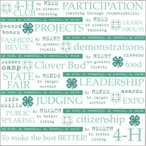 Quotes Scrapbook Paper