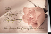 With deepest sympathy, loss of grandmother. A pale pink rose on a ...