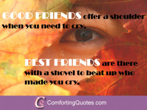 funny-friend-quotes-good-friends-offer-a-shoulder.jpg