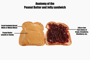 ... peanut butter jelly sandwich email me pictures of your peanut butter