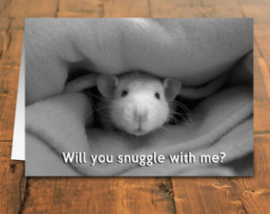 Cuddly Rat card, Will you snuggle with me card, rat or mouse cuddling ...