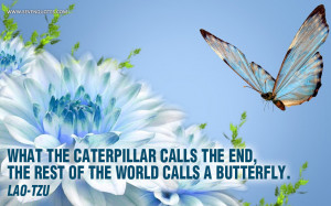 what the caterpillar calls the end of the world