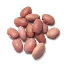 Seeking information about: pink bean