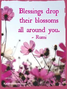 ... flowers gardens gorgeous flowers blessed drop random quotes gardens