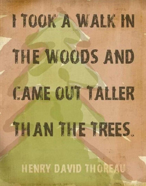 took a walk in the woods and came out taller than the trees ...