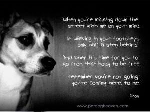 ... , Doggies Heavens, Pet Loss, Prayer For Dogs Pet Baby, Dogs Prayer