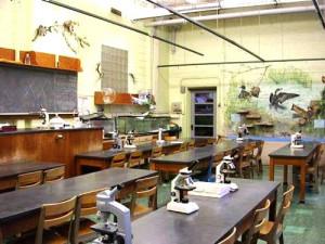 ... Classroom Arlington, Biology Classroom, Arlington High, Classroom